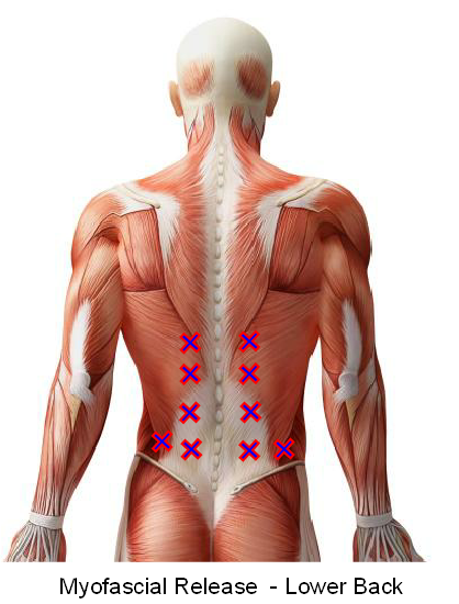 Myofascial Release - Lower back