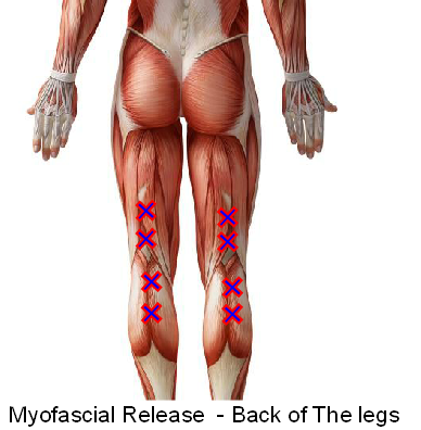 Myofascial release - Hamstrings and Calves
